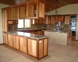 Kitchen Cabinets Design Software by Custom Kitchen Cabinet Design Constructions U2022 Home Interior Decoration