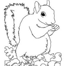 coloring pages of animals hibernating archives mente beta most