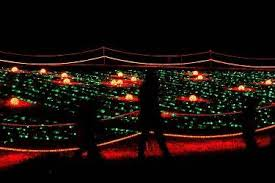 bull run park christmas lights christmas light shows bull run festival more fairfax county va