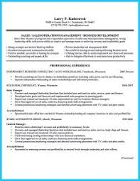 Car Salesman Resume Examples by Examples Of Resumes Resume Templates You Can Download Jobstreet