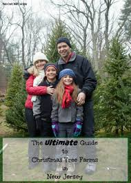 the ultimate guide to christmas tree farms in new jersey things