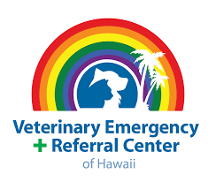 Home Design Center Honolulu by 24 Hour Animal Hospital In Honolulu Hi Welcome Veterinary