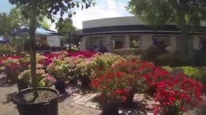 spring fever in the garden winter garden florida youtube