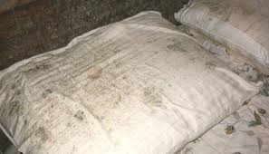 tache de sang sur canapé en tissu 7 astuces pour enlever des taches de moisissure sur du tissu
