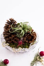 diy air plant gifts flax twine