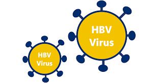 symptoms of hbv light colored stool understanding hep b