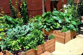 kitchen gardening ideas small patio vegetable garden ideas fashionpro info