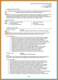 Internal Audit Job Description For Resume 10 Example Of A Good Cv Coaching Resume