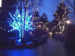 the village with the pretty christmas lights still up picture of