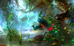 wallpaper wiki best beautiful peacock desktop backgrounds hd pic