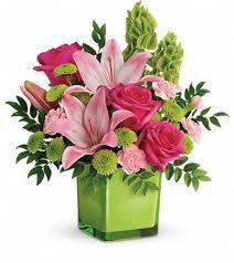 splendid spring garden flower shop fresh decoration san antonio
