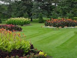 Landscape Lighting St Louis by Diy Landscaping Lawn Care Plans Design Ideas U0026 Decors