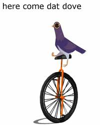 Unicycle Meme - here come dat dove trash doves know your meme