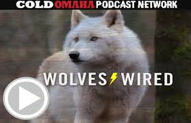Omaha Meme - wolves wired lynx wolves warriors discussion 92kqrs com kqrs fm