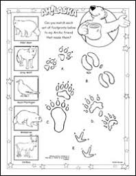 ah laska ah bear u0027s coloring book ah laska