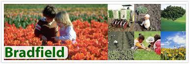 bradfield natural fertilizers for lawns organic fertilizers for
