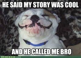 Cool Dog Meme - cool memes internet image memes at relatably com