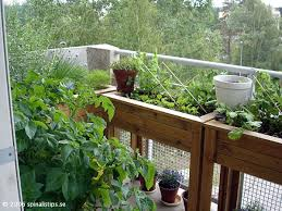 174 best urban garden balcony images on pinterest balcony