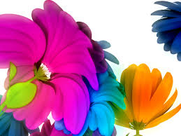 flowers clipart for desktop full size