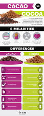 cacao nibs superfood that boosts energy and burns fat dr axe cacao vs cocoa dr axe
