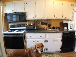 wholesale kitchen cabinets nj 10 fresh discount kitchen cabinets nj harmony house blog