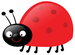 176 best katicabogaras ötletek images on pinterest ladybug