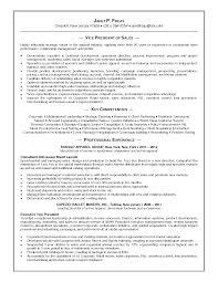 Merchandiser Duties Resume Vp Marketing Resume Free Resume Example And Writing Download