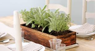 Window Box For Herbs Jenny Steffens Hobick Easy Summer Centerpiece Planted Herbs