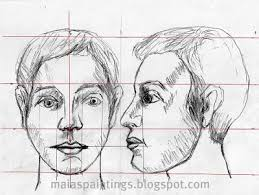 human face drawing face proportions