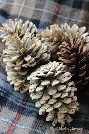 white pine cone my suburban sanctuary blog archive bleaching pine cones