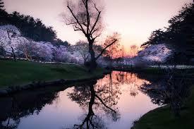 Landscape Photography Japanese Landscape Photography Japanese Landscape Photography