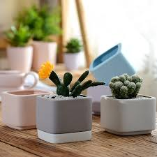 mini ceramic flower pots planters for succulents indoor modern