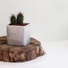 geometric ceramic planter succulent planter cactus planter air