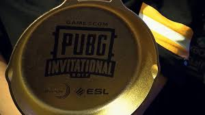 pubg pan the pubg invitational rapidly went through highs and lows but
