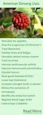 32 best foraging ginseng images on pinterest medicinal herbs