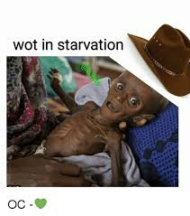 Wot Memes - wot in starvation oc meme on sizzle