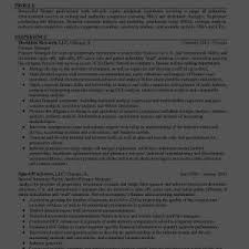 resume profile statement examples resume templates examples cover