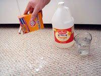 How To Clean The Rug 22 Best The Rug Doctor Images On Pinterest Rug Doctor Cleaning