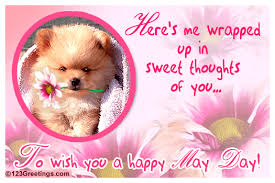 sweet thoughts of you free may day ecards greeting cards 123