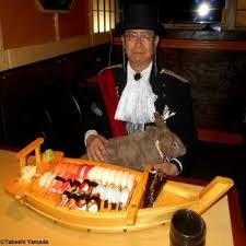 japanese cuisine bar japanese cuisine bar 335 photos 279 reviews japanese