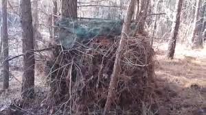 Tree Trunk Hunting Blind Bushcraft Hunting Blind Youtube