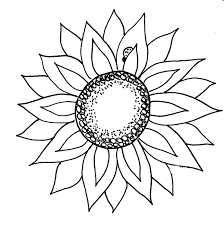 sunflower clipart black and white many interesting cliparts