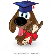 dog graduation cap and gown dog graduation stock images royalty free images vectors