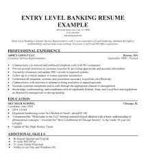Samples Of Resume Summary Entry Level Customer Service Resume Summary Professional Template