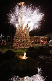 viejas kicks season with tree lighting friday