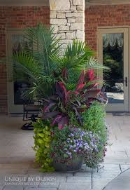206 best images about plants on pinterest gardens planters and