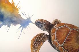 speed painting watercolour sea turtle youtube