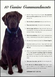 Please Love Me Quotes by 10 Canine Commandments Dog Pup And Doggies