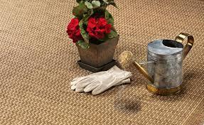 Home Decorators Outdoor Rugs Home Decorators Outdoor Rugs With Rug Outdoor Rugs Contemporary