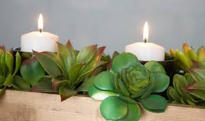 affordable cute and easy diy succulent centerpiece tutorial